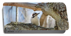 Portable Battery Charger featuring the photograph A Male Downey Woodpecker  1111 by Michael Peychich
