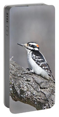 A Male Downey Woodpecker 1120 Portable Battery Charger by Michael Peychich