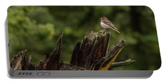 A Male Purple Finch In Spring Portable Battery Charger