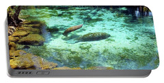 A Manatee Calf And Cow  Portable Battery Charger