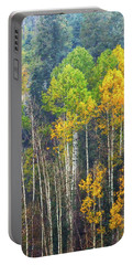 A Muted Fall Portable Battery Charger