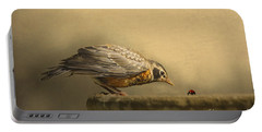 Robin Portable Batteries Chargers