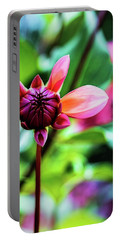 Portable Battery Charger featuring the photograph A New Day by Jessica Manelis