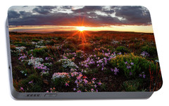 Portable Battery Charger featuring the photograph A Nuttalls Linanthastrum Morning by Leland D Howard