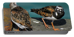 A Pair Of Turnstones Portable Battery Charger