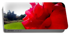 Portable Battery Charger featuring the photograph A Rose In The Sun by Robert Knight