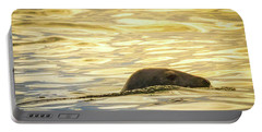 A Seal's Late Afternoon Swim Portable Battery Charger