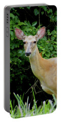 A Serious Deer Portable Battery Charger