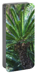 Portable Battery Charger featuring the photograph A Shady Palm Tree by Raphael Lopez