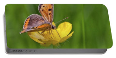 A Small Copper Butterfly (lycaena Portable Battery Charger