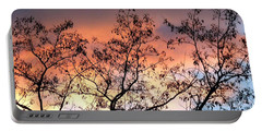 Portable Battery Charger featuring the photograph A Splendid Silhouette by Will Borden