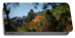 Portable Battery Charger featuring the photograph A Spot Of Fall by DeeLon Merritt