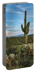 Portable Battery Charger featuring the photograph A Spring Evening In The Sonoran  by Saija Lehtonen