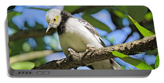 A Starling To Remember Portable Battery Charger