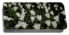 A Study In Black And White Tulips Portable Battery Charger