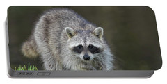 A Surprised Raccoon Portable Battery Charger