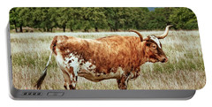 Portable Battery Charger featuring the photograph A Texas Legend by Linda Unger