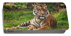 A Tiger Relaxing On A Cool Afternoon Portable Battery Charger by Jim Fitzpatrick