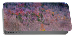 Portable Battery Charger featuring the photograph A Touch Of Autumn by David Patterson