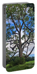 Portable Battery Charger featuring the photograph A Tree In Paradise by DJ Florek