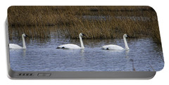 A Trio Of Swans Portable Battery Charger