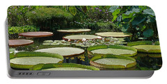 Portable Battery Charger featuring the photograph A Water Garden by Byron Varvarigos