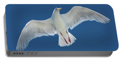 Portable Battery Charger featuring the photograph A White Gull Flying In Sky by William Lee