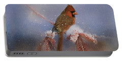 Portable Battery Charger featuring the photograph A Winters Day by Lana Trussell