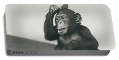 A Young Chimpanzee Playing With A Brush Portable Battery Charger