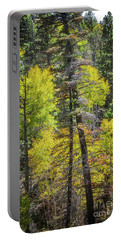 Above Taos Portable Battery Charger