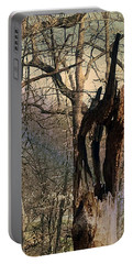 Abstract Dead Tree Portable Battery Charger