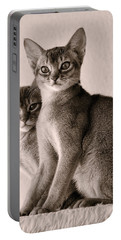 Abyssinian Kittens Portable Battery Charger