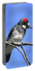Acorn Woodpecker Close Portable Battery Charger