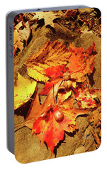 Portable Battery Charger featuring the photograph Acorns Fall Maple Leaf by Meta Gatschenberger