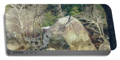 Across From Eagle Falls Portable Battery Charger