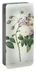 Adelia Aurelianensis Portable Battery Charger
