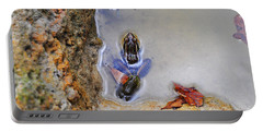 Portable Battery Charger featuring the photograph Adopted Amphibian by Al Powell Photography USA