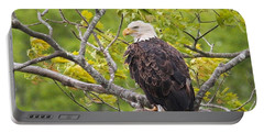 Adult Bald Eagle Portable Battery Charger