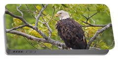Portable Battery Charger featuring the photograph Adult Bald Eagle by Debbie Stahre