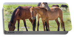 Affectionate Mustangs Portable Battery Charger