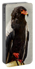 African Eagle-bateleur II Portable Battery Charger by Kathy M Krause