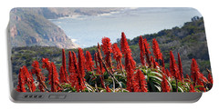 African Aloe And False Bay Portable Battery Charger
