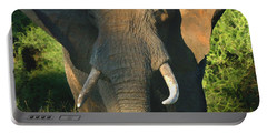 African Bull Elephant Portable Battery Charger
