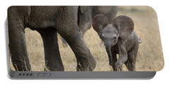 African Elephant Mother And Under 3 Portable Battery Charger