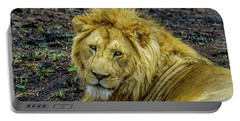 African Lion Close-up Portable Battery Charger