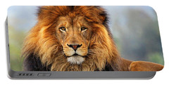 African Lion 1 Portable Battery Charger by Ellen Henneke