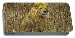 African Lion In Camouflage Portable Battery Charger
