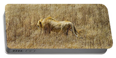 African Lion Stalking Portable Battery Charger