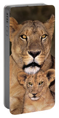 Portable Battery Charger featuring the photograph African Lions Parenthood Wildlife Rescue by Dave Welling