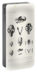 African Mammal Skulls Portable Battery Charger
